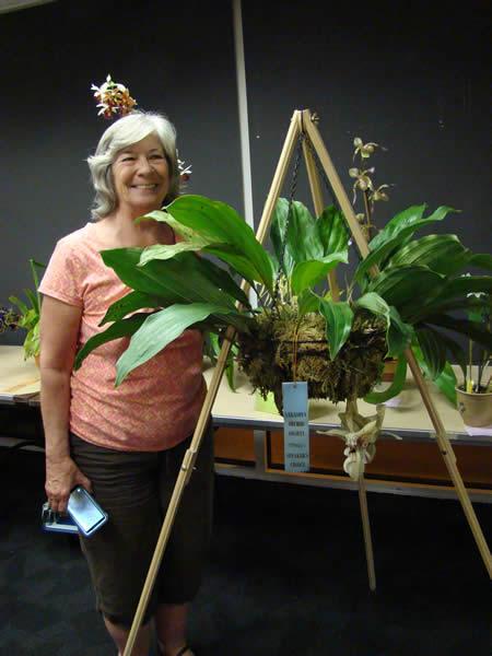 Speaker's Choice Award Stanhopea Lydia Bush (Stan. nigroviolacea x Stan. grandiflora) Grown by Karen Bird-Lister