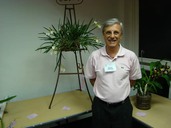 ManuelCBnodosa