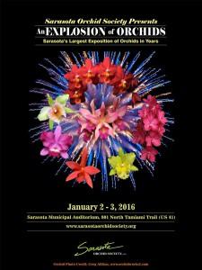 2016 SOS Show Poster Smaller