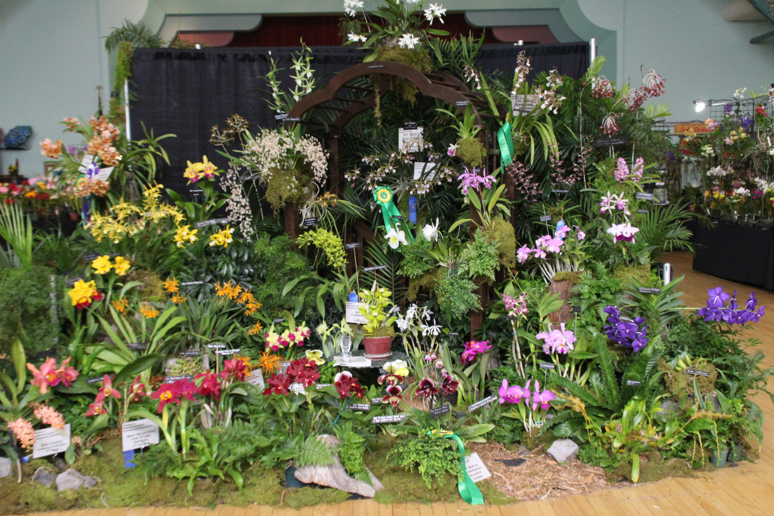 2017 SOS Show AOS Award for Commercial Display