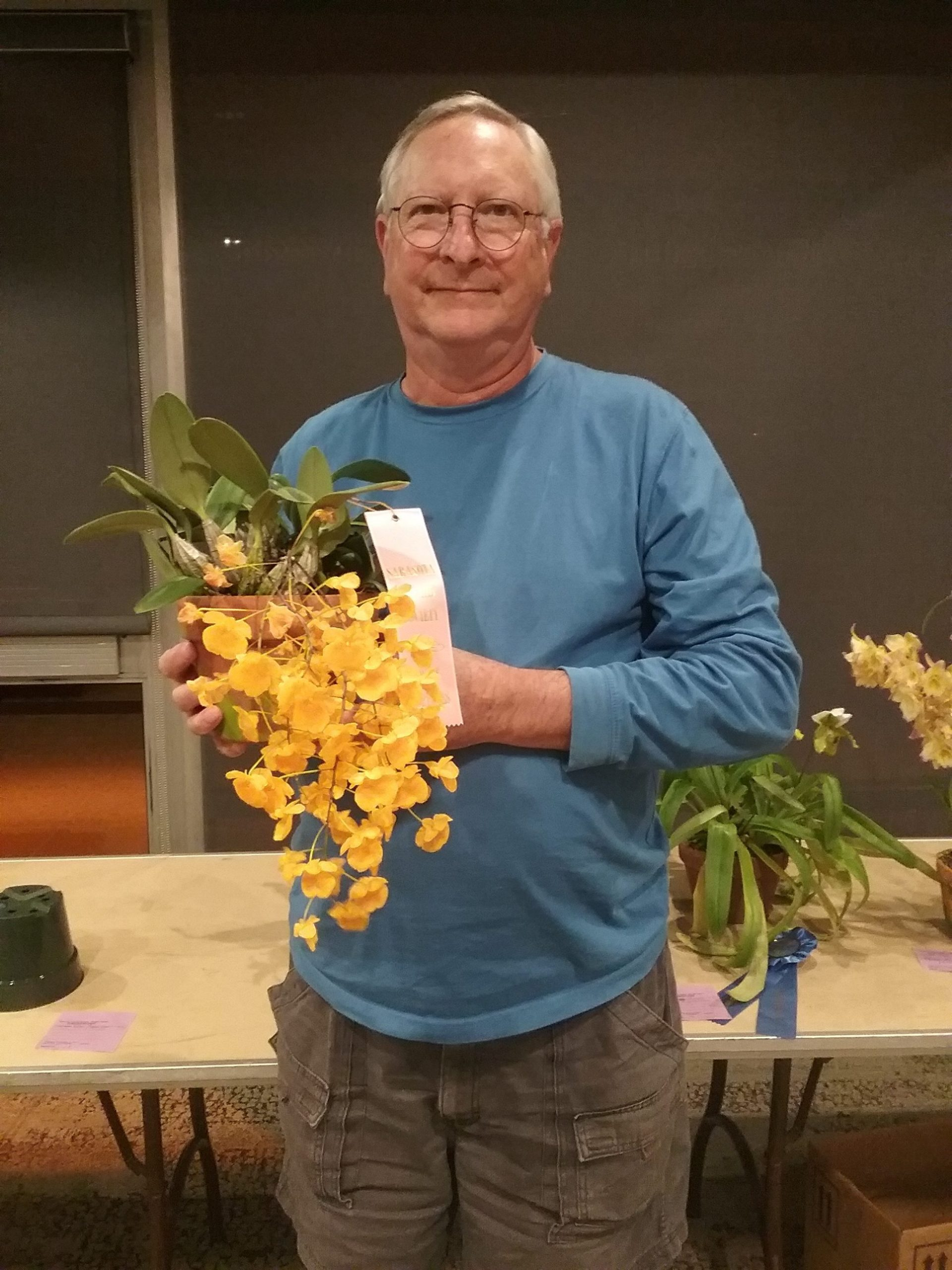 Best Species,Den. aggregatum-Greg Wirth - Copy